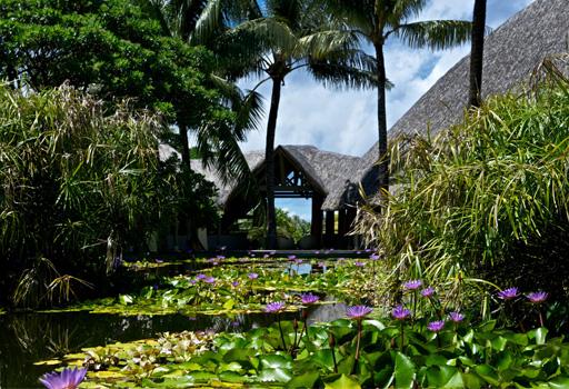 Polynesian wellness center
