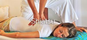 Shiatsu specialized theraphists