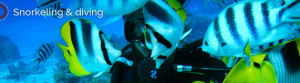 Diveasy Bora Bora: eco-snorkeling and diving